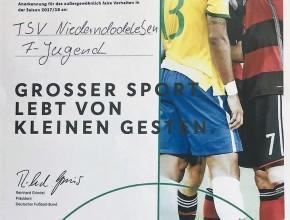 Urkunde DFB